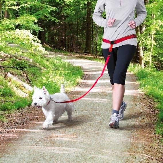 laisse chien sangle de ceinture de taille pour canicross jogging. Black Bedroom Furniture Sets. Home Design Ideas